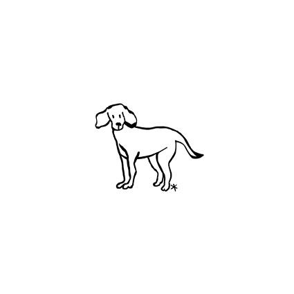 PET-002-grand-chien