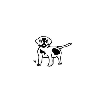 PET-003-petit-chien